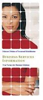 DVR Services for Business Brochure